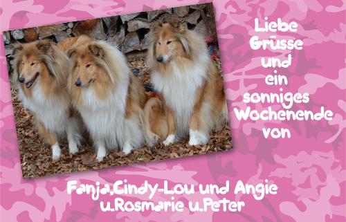 An den Beitrag angehängtes Bild: http://colliewelt.de/whitehorsehill/Bilder/Userbilder/1017.jpg