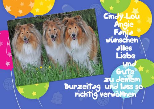 An den Beitrag angehängtes Bild: http://colliewelt.de/whitehorsehill/Bilder/Userbilder/1042.jpg