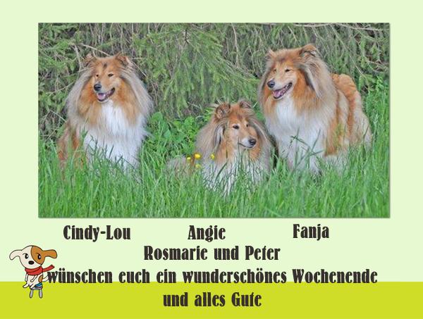 An den Beitrag angehängtes Bild: http://colliewelt.de/whitehorsehill/Bilder/Userbilder/1068.jpg