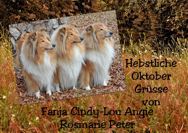 An den Beitrag angehängtes Bild: http://colliewelt.de/whitehorsehill/Bilder/Userbilder/1090.jpg