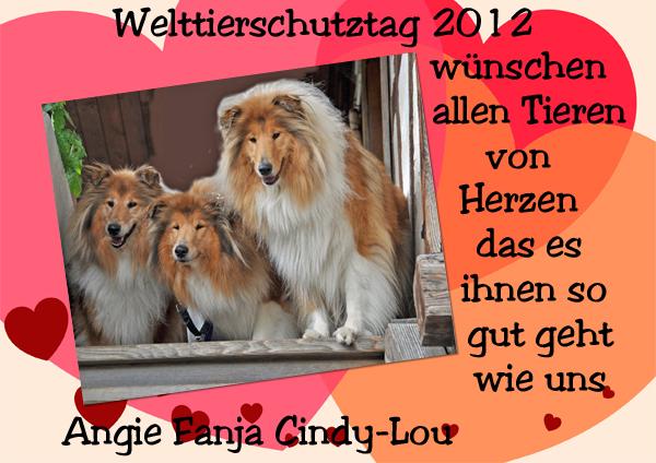 An den Beitrag angehängtes Bild: http://colliewelt.de/whitehorsehill/Bilder/Userbilder/1091.jpg
