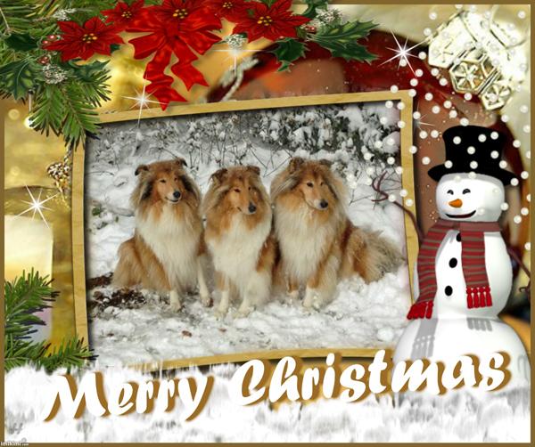 Bildergebnis für Schönen 4 Advent Wünschen