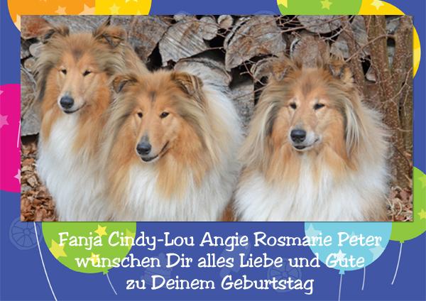 An den Beitrag angehängtes Bild: http://colliewelt.de/whitehorsehill/Bilder/Userbilder/1138.jpg
