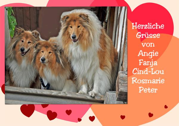 An den Beitrag angehängtes Bild: http://colliewelt.de/whitehorsehill/Bilder/Userbilder/1155.jpg