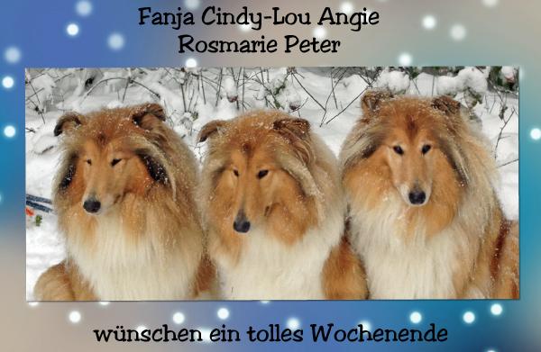 An den Beitrag angehängtes Bild: http://colliewelt.de/whitehorsehill/Bilder/Userbilder/1196.jpg