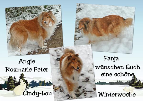 An den Beitrag angehängtes Bild: http://colliewelt.de/whitehorsehill/Bilder/Userbilder/1200.jpg
