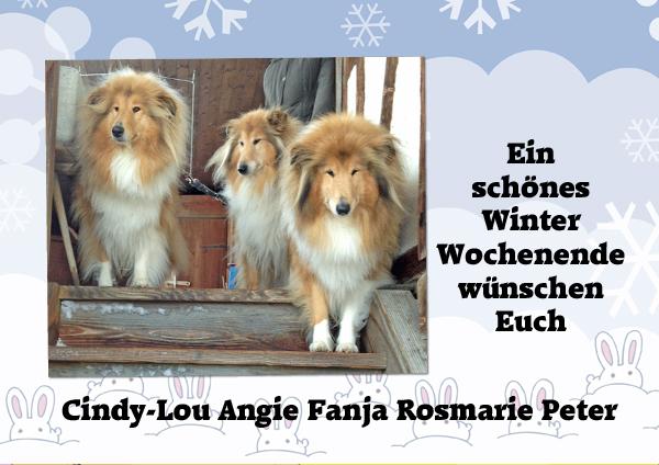 An den Beitrag angehängtes Bild: http://colliewelt.de/whitehorsehill/Bilder/Userbilder/1206.jpg