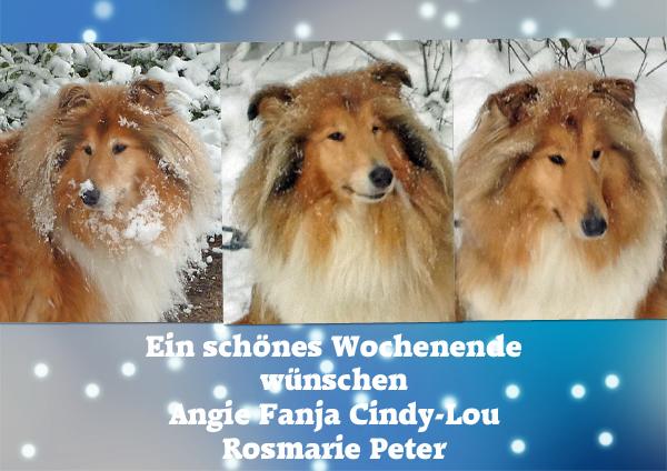 An den Beitrag angehängtes Bild: http://colliewelt.de/whitehorsehill/Bilder/Userbilder/1210.jpg