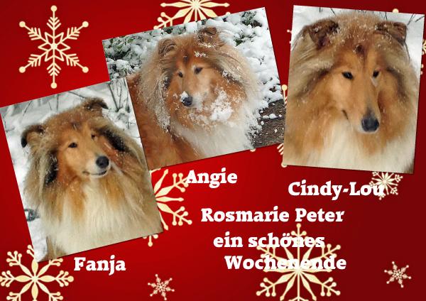 An den Beitrag angehängtes Bild: http://colliewelt.de/whitehorsehill/Bilder/Userbilder/1213.jpg