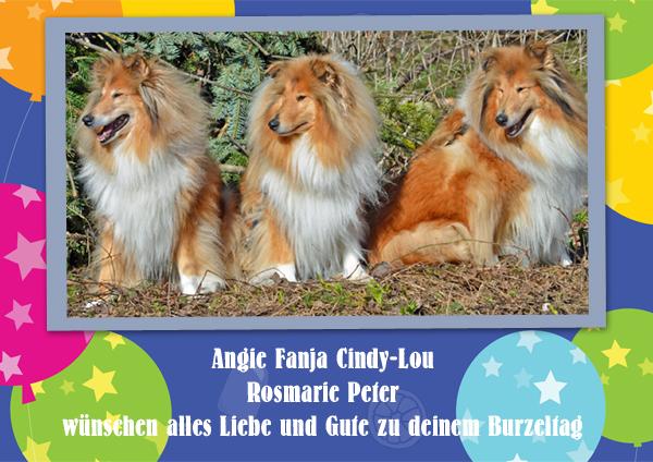 An den Beitrag angehängtes Bild: http://colliewelt.de/whitehorsehill/Bilder/Userbilder/1296.jpg