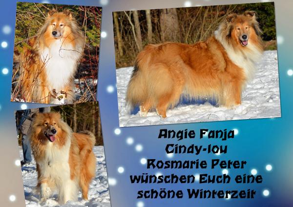 An den Beitrag angehängtes Bild: http://colliewelt.de/whitehorsehill/Bilder/Userbilder/1410.jpg