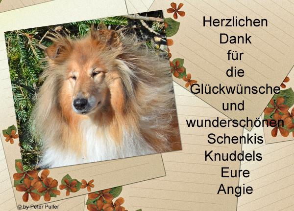 An den Beitrag angehängtes Bild: http://colliewelt.de/whitehorsehill/Bilder/Userbilder/1480.jpg