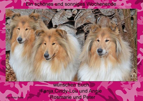 An den Beitrag angehängtes Bild: http://colliewelt.de/whitehorsehill/Bilder/Userbilder/1481.jpg
