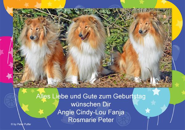 An den Beitrag angehängtes Bild: http://colliewelt.de/whitehorsehill/Bilder/Userbilder/1486.jpg