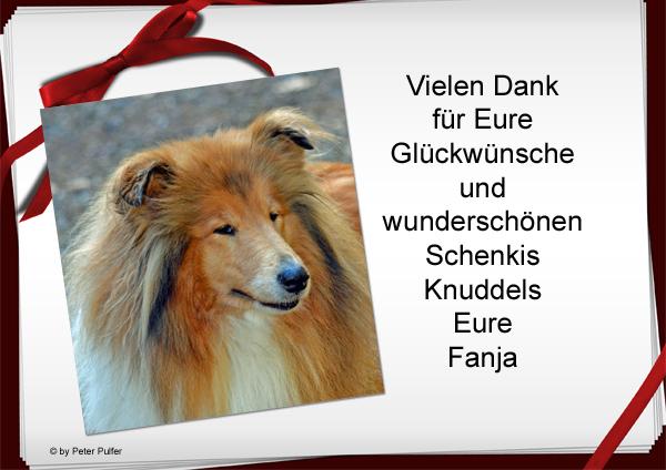 An den Beitrag angehängtes Bild: http://colliewelt.de/whitehorsehill/Bilder/Userbilder/1489.jpg
