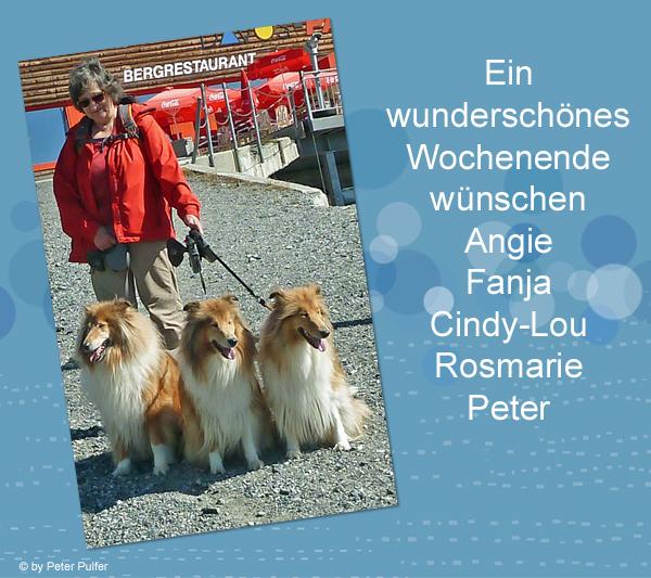 An den Beitrag angehängtes Bild: http://colliewelt.de/whitehorsehill/Bilder/Userbilder/1496.jpg