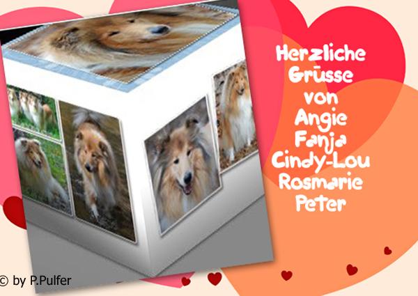 An den Beitrag angehängtes Bild: http://colliewelt.de/whitehorsehill/Bilder/Userbilder/1502.jpg