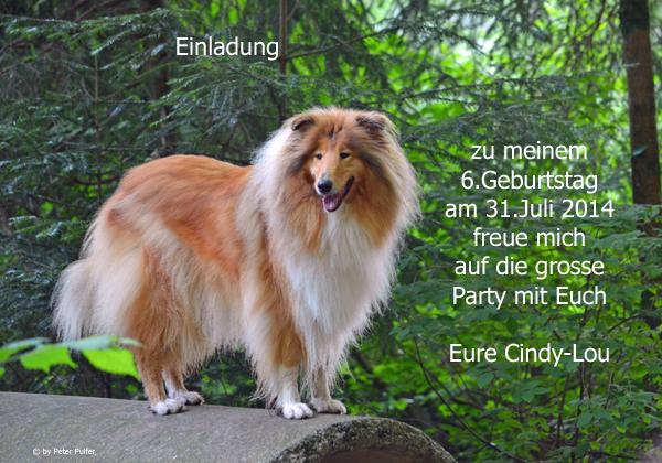 An den Beitrag angehängtes Bild: http://colliewelt.de/whitehorsehill/Bilder/Userbilder/1507.jpg