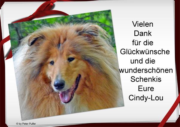 An den Beitrag angehängtes Bild: http://colliewelt.de/whitehorsehill/Bilder/Userbilder/1512.jpg