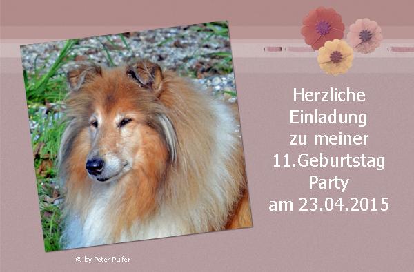 An den Beitrag angehängtes Bild: http://colliewelt.de/whitehorsehill/Bilder/Userbilder/1635.jpg