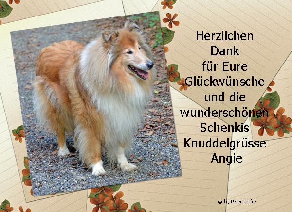 An den Beitrag angehängtes Bild: http://colliewelt.de/whitehorsehill/Bilder/Userbilder/1643.jpg