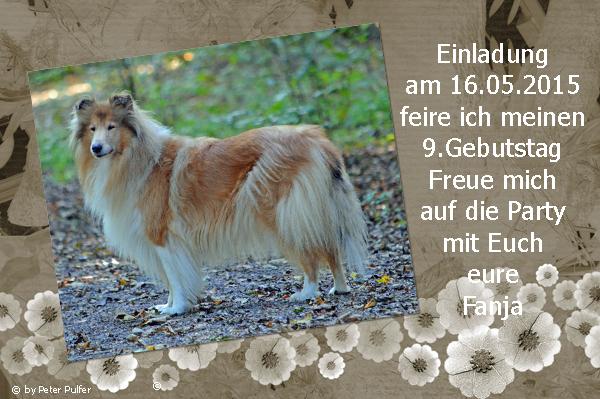 An den Beitrag angehängtes Bild: http://colliewelt.de/whitehorsehill/Bilder/Userbilder/1647.jpg