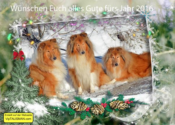 An den Beitrag angehängtes Bild: http://colliewelt.de/whitehorsehill/Bilder/Userbilder/1705.jpg
