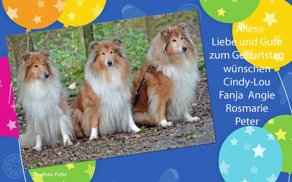An den Beitrag angehängtes Bild: http://colliewelt.de/whitehorsehill/Bilder/Userbilder/1706.jpg
