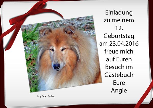 An den Beitrag angehängtes Bild: http://colliewelt.de/whitehorsehill/Bilder/Userbilder/1747