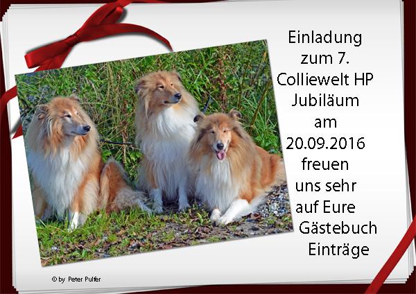 An den Beitrag angehängtes Bild: http://colliewelt.de/whitehorsehill/Bilder/Userbilder/1778.jpg