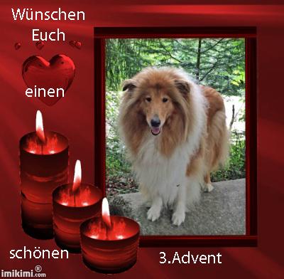 An den Beitrag angehängtes Bild: http://colliewelt.de/whitehorsehill/Bilder/Userbilder/1796.jpg