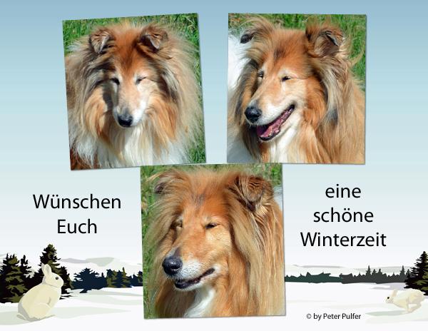 An den Beitrag angehängtes Bild: http://colliewelt.de/whitehorsehill/Bilder/Userbilder/1927.jpg