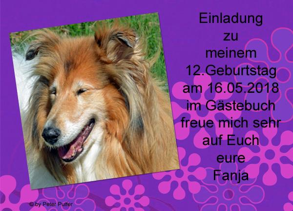 An den Beitrag angehängtes Bild: http://colliewelt.de/whitehorsehill/Bilder/Userbilder/2002.jpg