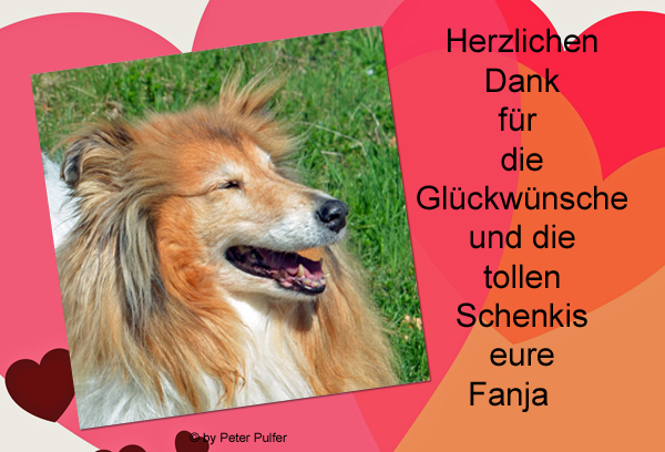 An den Beitrag angehängtes Bild: http://colliewelt.de/whitehorsehill/Bilder/Userbilder/2004.jpg