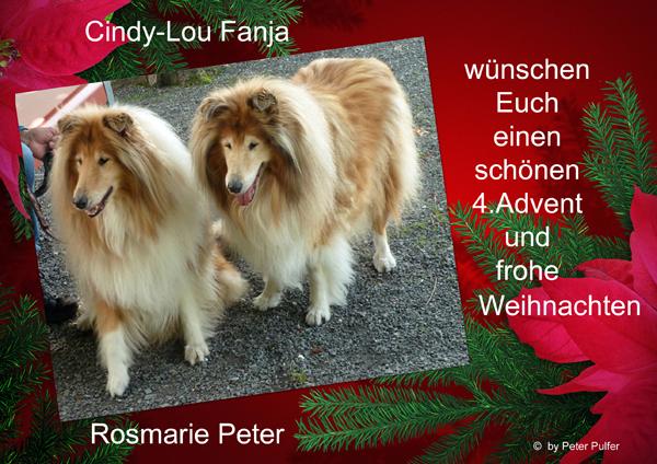 An den Beitrag angehängtes Bild: http://colliewelt.de/whitehorsehill/Bilde,r/Userbilder/2064.jpg