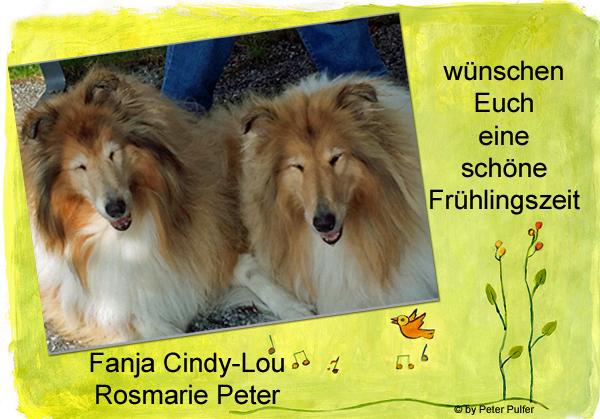 An den Beitrag angehängtes Bild: http://colliewelt.de/whitehorsehill/Bilder/Userbilder/2100.jpg.