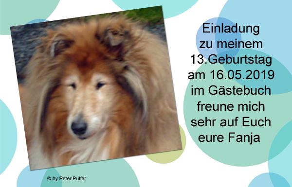 An den Beitrag angehängtes Bild: http://colliewelt.de/whitehorsehill/Bilder/Userbilder/2109.jpg.
