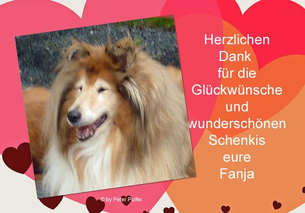 An den Beitrag angehängtes Bild: http://colliewelt.de/whitehorsehill/Bilder/Userbilder/2113.jpg.