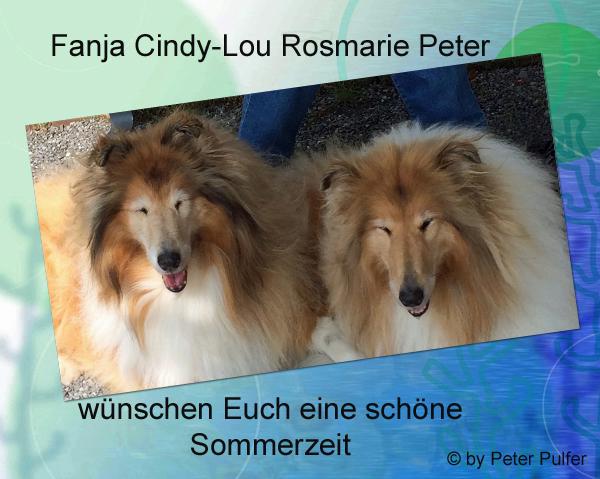 An den Beitrag angehängtes Bild: http://colliewelt.de/whitehorsehill/Bilder/Userbilder/2118.jpg