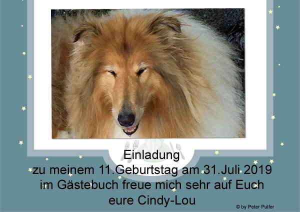An den Beitrag angehängtes Bild: http://colliewelt.de/whithorsehill/Bilder/Userbilder/2126.jpg.