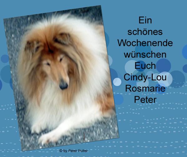 An den Beitrag angehängtes Bild: http://colliewelt.de/whitehorsehill/Bilder/Userbilder/2131.jpg