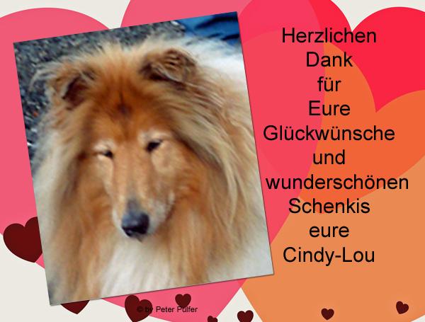 An den Beitrag angehängtes Bild: http://colliewelt.de/whithorsehill/Bilder/Userbilder/2132.jpg.