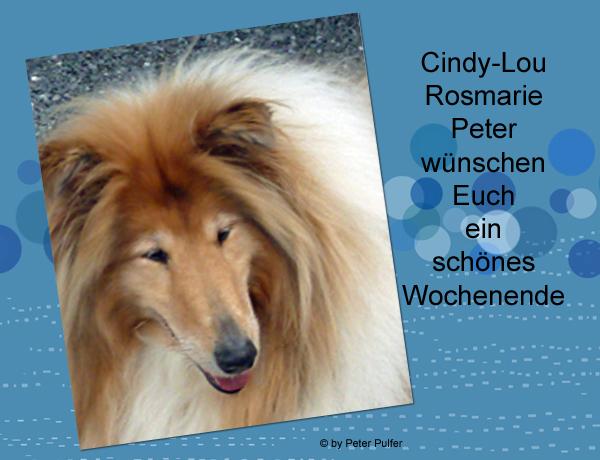 An den Beitrag angehängtes Bild: http://colliewelt.de/whithorsehill/Bilder/Userbilder/2138.jpg.