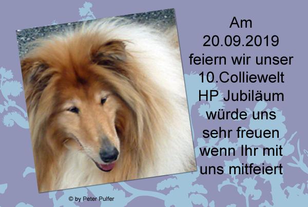 An den Beitrag angehängtes Bild: http://colliewelt.de/whithorsehill/Bilder/Userbilder/2145.jpg.