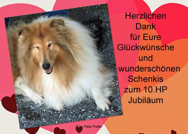 An den Beitrag angehängtes Bild: http://colliewelt.de/whithorsehill/Bilder/Userbilder/2146.jpg.