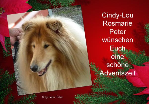 An den Beitrag angehängtes Bild: http://colliewelt.de/whithorsehill/Bilder/Userbilder/2160.jpg.