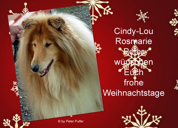 An den Beitrag angehängtes Bild: http://colliewelt.de/whithorsehill/Bilder/Userbilder/2167.jpg.