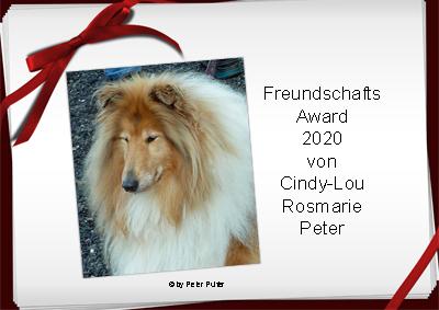 An den Beitrag angehängtes Bild: http://colliewelt.de/whitehorsehill/Bilder/Userbilder/2173.jpg