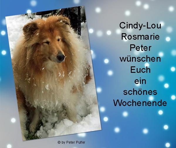 An den Beitrag angehängtes Bild: http://colliewelt.de/whitehorsehill/Bilder/Userbilder/2180.jpg