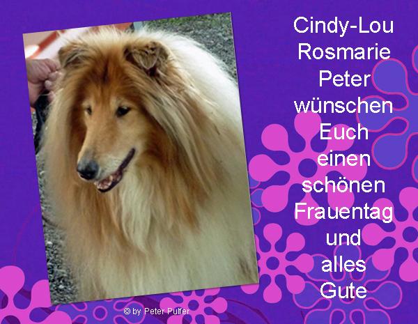 An den Beitrag angehängtes Bild: http://colliewelt.de/whitehorsehill/Bilder/Userbilder/2182.jpg